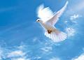 День-Святой-Троицы,-Пятидесятница